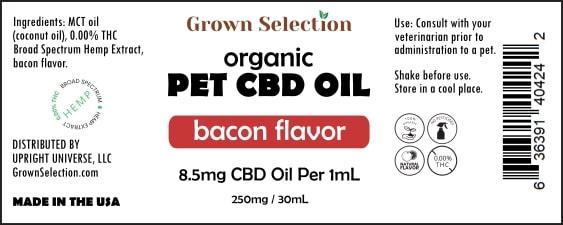 CBD pet oil, bacon flavor