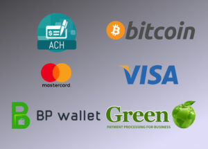 payment options - logos: ACH, Bitcoin, Mastercard, Visa, BP Wallet, GreenPay